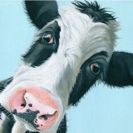 in-the-dairy